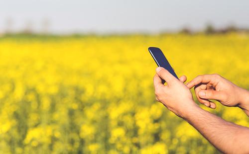5G beneficiará o setor do agronegócio e a ampliação da conectividade nas zonas rurais